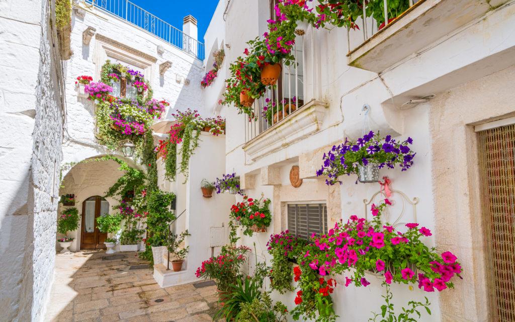 vicolo con fiori a Cisternino